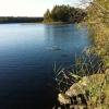 Bilder från Lilla Hindsjön
