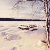 Bilder från Lillsjöns utlopp