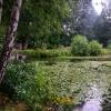 Bilder från Långsjön