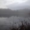 Bilder från Lögdösjön