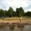 Bilder från Borgardalsbadet, Lötsjön