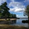 Bilder från Malmön