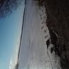 Bilder från Maltesholmsbadet V, Mälaren
