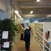 Bilder från Gävleborgs Biståndsgrupp