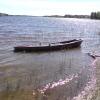 Bilder från Nydalasjön