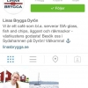 Bilder från Linas Brygga