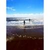 Bilder från Skrea strand