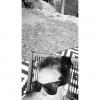 Bilder från Lilla Essingens badbryggor