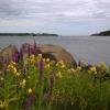 Bilder från Västerviks Simhall