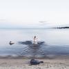 Bilder från Vitskärsudden friluftsbad