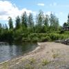 Bilder från Sågviken, Råsvalen