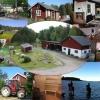 Bilder från Haga Gård, Stall