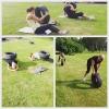 Bilder från Nossebrobadet Bad, Gym & Camping