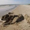 Bilder från Sandhammaren