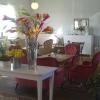 Bilder från Rommelsjö Café