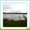 Bilder från Sjunnarydssjön Ormaryds badpl.