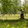 Bilder från Alsterbro Ställplats och Camping