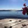 Bilder från Sandvik, Stora Ålö