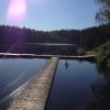 Bilder från Skene Hedgärdesjön