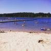Bilder från Skogsjön