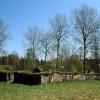 Bilder från Nittorps kyrkoruin