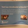 Bilder från Alnöbadet
