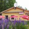 Bilder från Näsvikens Grill och Pizzeria
