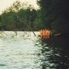 Bilder från Svinstadsjön