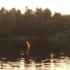 Bilder från Södra Långvattnet