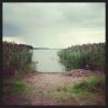 Bilder från Ymsens badplats