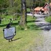 Bilder från Öströö Fårfarm