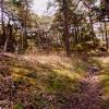 Bilder från Snäck Camping