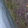 Bilder från Kolmårdens Camping och Stugby