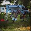 Bilder från Ronneby Havscamping