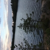 Bilder från Grums Fish n´ Camp Sävsjön