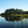Bilder från Kroksjöns Fiskecamp