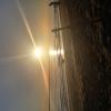 Bilder från Parapeten Tropical Beach