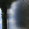 Bilder från Norra Långevattnet