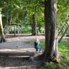 Bilder från Tirups Örtagård