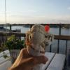 Bilder från Fjällgatans Kaffestuga