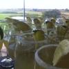 Bilder från Ljunghusens Golfrestaurang