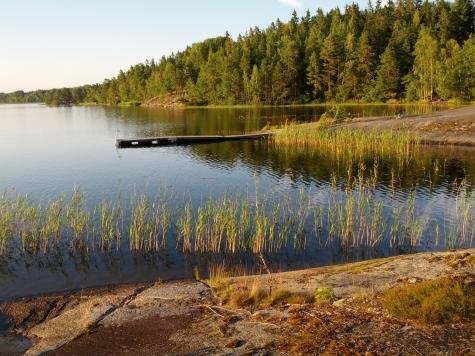 Viggeby norra stranden, Järnlunden