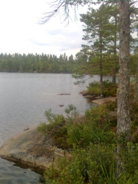Drömgruvan, Lilla Älgsjön