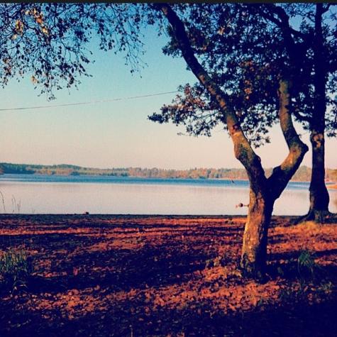 Lokasjön