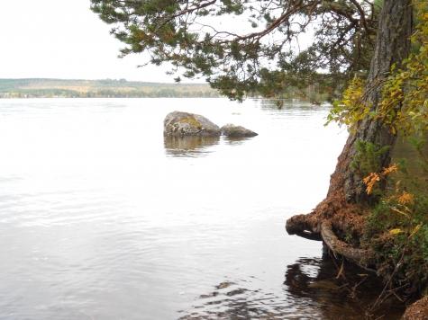 Andersöns naturreservat