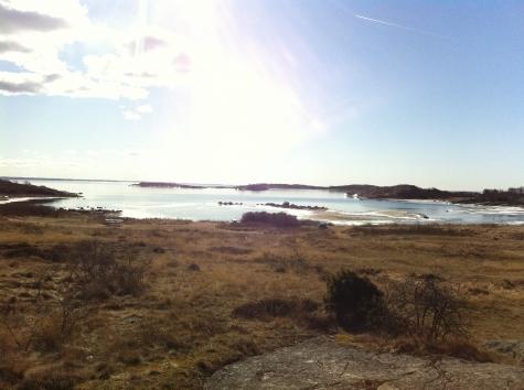 Vrångö Nötholmen