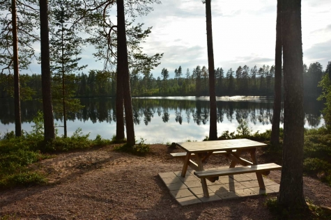 Siknäs Fyrklöver Naturcamping