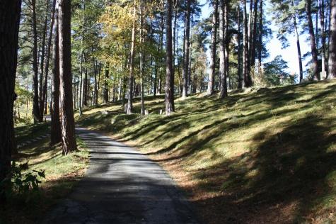Skogsö kapell