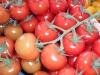 Världens godaste tomater från gårdsbutiken på Tomatens hus