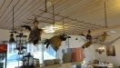 Kastrullhäxorna flyger i taket